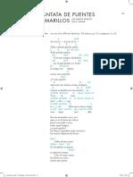 Cantata de puentes amarillos.pdf
