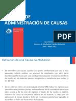Administracion-de-Causas-14.04.2012.pdf