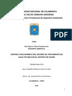 TESIS (1)-chueco.pdf