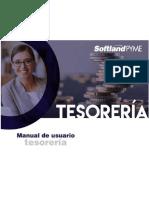 Tesorero.pdf