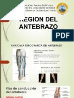 ANTEBRAZO DIAPOSITIVAS 2.pptx