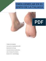 Fasciotomia Gemelar en El Tratamiento de La Talalgia