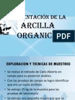 Presentacion de Arcilla Organica (resultados)