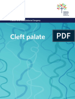 Cleft Palate Booklet