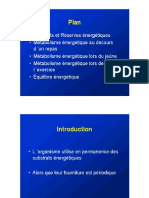 Physiologie Des Grands Métabolismes