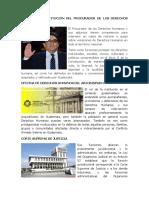 FUNCION DE INSTITUCIÓN DEL PROCURADOR DE LOS DERECHOS HUMANOS.docx