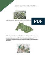Clases Practicas de Concreto (1)
