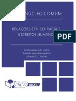 Relações Étnico-Raciais e Direitos Humanos