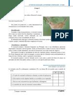 Teste Portugues 5º Ano Texto Narrativo
