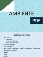 10.AMBIENTE