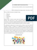 LA ORGANIZACIÓN apa.docx