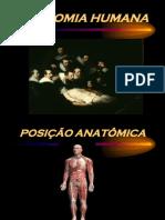 Introdução Anatomia Aplicada