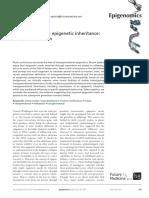 Herencia transgeneracional epigénetica
