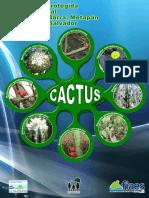 Afiche de Cactus 1