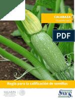 Cultivo Calabaza