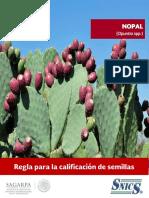 Cultivo Nopal