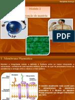 mdulo2-obtenodematria