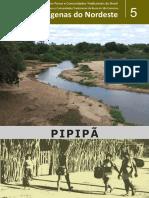 05-Pipipa.pdf