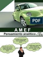 293041199-AMEF.pdf