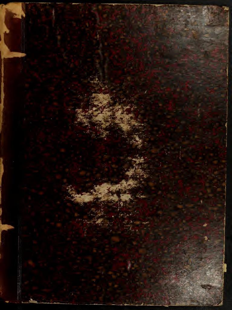 Beito Le Punte del Collare delle Donne con Fiocco di Neve Forma Collo Camicia Spilla con Catena Nappe Collare dei Monili Decorazioni per La Femmina