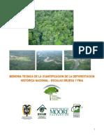 MEMORIA TECNICA DE LA CUANTIFICACION DE LA DEFORESTACION HISTORICA NACONAL ESCALA GRUESA Y FINA.pdf