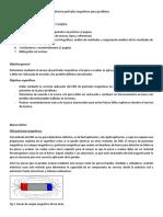V3.0 -Informe Partículas Magnéticas Pieza Problema