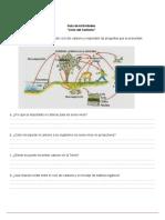 Clase 1 Guiadeactividades.ciclodelcarbono