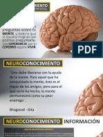 0 Neuroconocimiento, Entrenamiento Cerebral v1.pdf