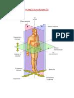 Planos Anatomicos