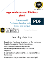 Hypothalamus and Pituitary Gland