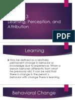 Ch3 Learning,Perception