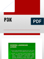 P3K TIWISADA