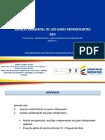 SAO.pdf