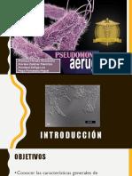 Diapos Pseudomonas