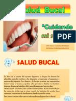 Salud Bucal Rotafolio Niño