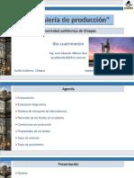 Ingeniería de producción_1.1.pdf