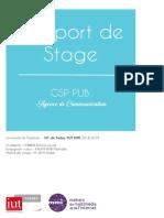 Raport_de_Stage_MMI.pdf