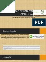 Estudio de Impacto Ambiental Exposicion Conga