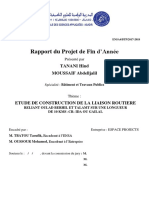 rapport pfa fin.pdf