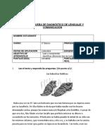 FORMATO DE PRUEBAS  5 DIAGNOSTICO 2019.docx