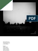 NPs#5.pdf