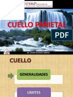 CUELLO PARIETAL06 08 18(1).pdf