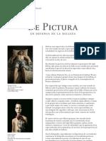 De Pictura-dossier Prensa