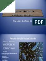 reproduo-assexuada_bb188ec781f7dd55c6ae6c9664a3c51d