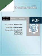 INFORME PROYECTO DE TURBINA TESLA-1 1.docx