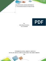 Paso 2 – Reconocimiento Opciones de Trabajo de Grado Johanna Ferla (1).docx