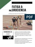 Fatiga y Neurociencia.pdf
