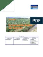 B2_Herencia-arabe-actividad.pdf