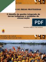 Direitos Indigenas (1)