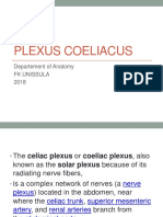 116253 Plexus Coeliacus